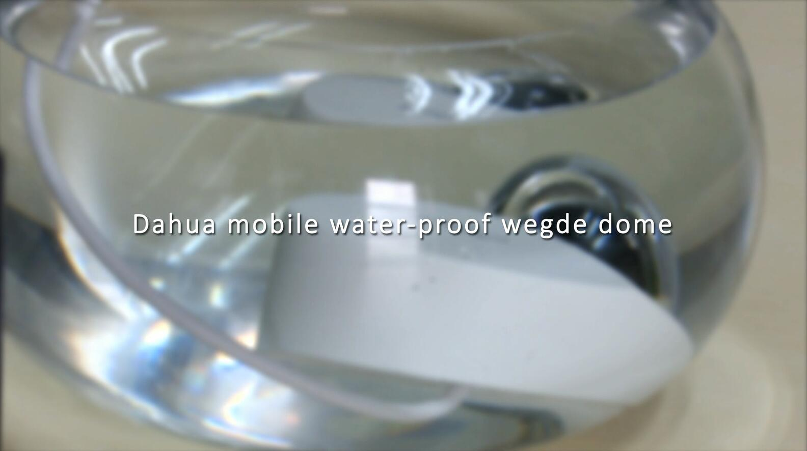 Dahua mobile water-proof wegde dome