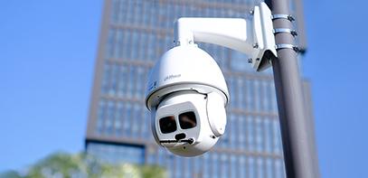 Dahua Iris Technology